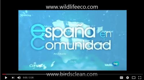 """Birds Clean en """"España en Comunidad"""" de La 2"""
