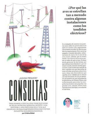 Publicación en la revista Buena Vida suplemento de El País